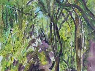 Watercolour and acyclic walk through The Grove, New Zealand.