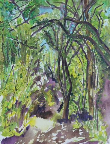 Watercolour and acyclic walk through The Grove, New Zealand.