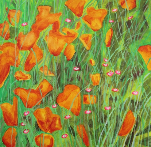 orange poppies against green grasses