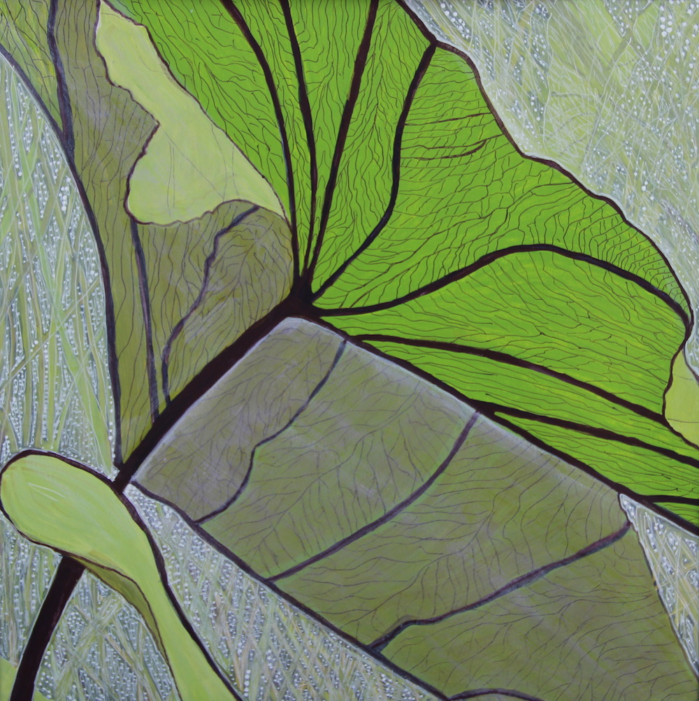 Acrylic painting underside of giant leaf.